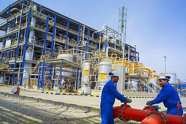 سبد پربار این سرمایه گذار از چاههای نفت / شیر سودآوری «تاپیکو» باز میشود
