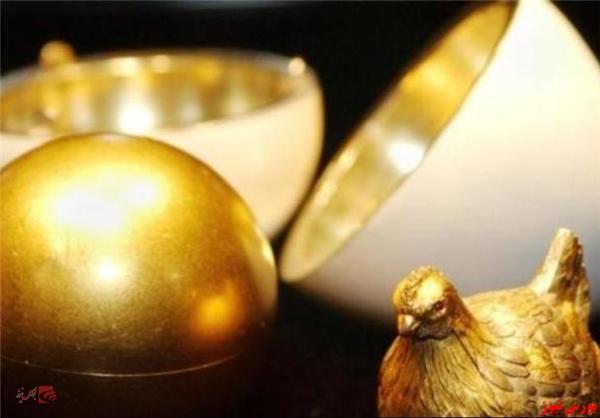 مرغی که تخم طلا می کرد، مُرد