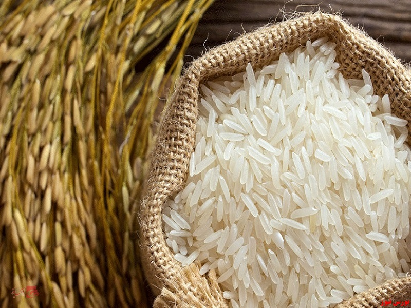 معاملات گواهی سپرده برنج طارم مازندران+ بورس نیوز